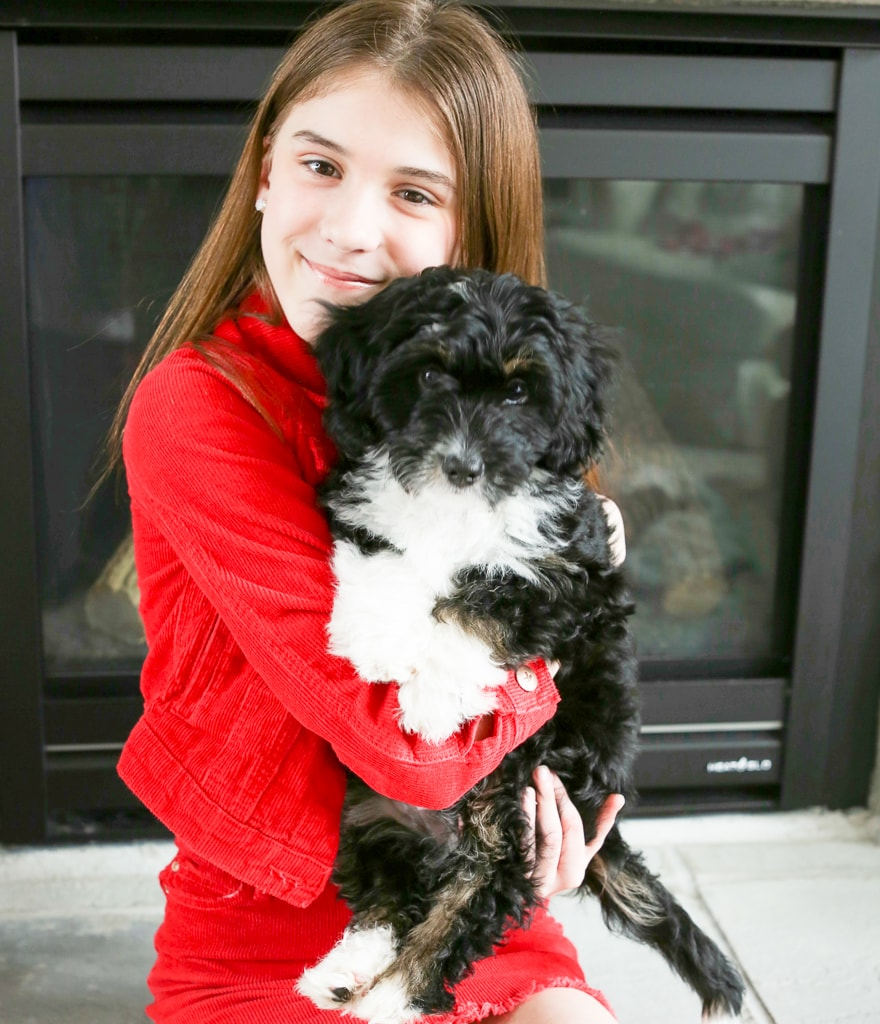 A girl in a red jacket and skirt holding a black and white puppy in front of a fireplace