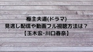 極主夫道(ドラマ)の見逃し配信や動画フル視聴方法は?【玉木宏・川口春奈】
