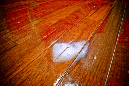 Your Jarrah Floor: Tips to Preserve the Luster and Finish