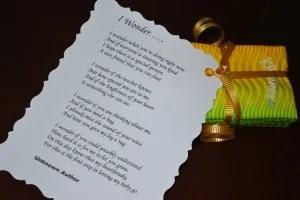 boohoo poem