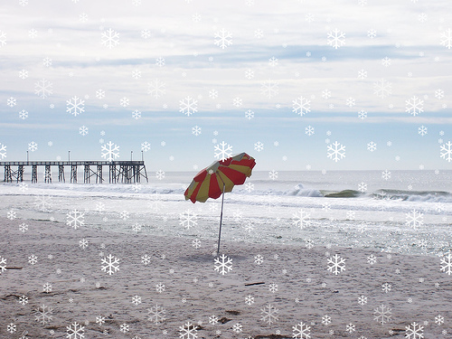 15 Ways To Celebrate Winter In Florida Happy Home Fairy