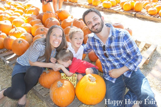 pumpkin patch 12