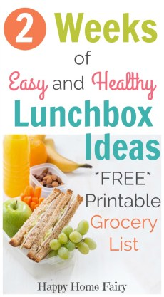2 Weeks of Easy and Healthy Lunchbox Ideas