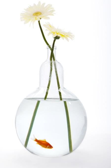 web-fishbowl-bottle-vase