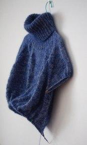 blue-and-furry-roikkumassa