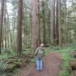Mike explores the forest along the North Umpqua River