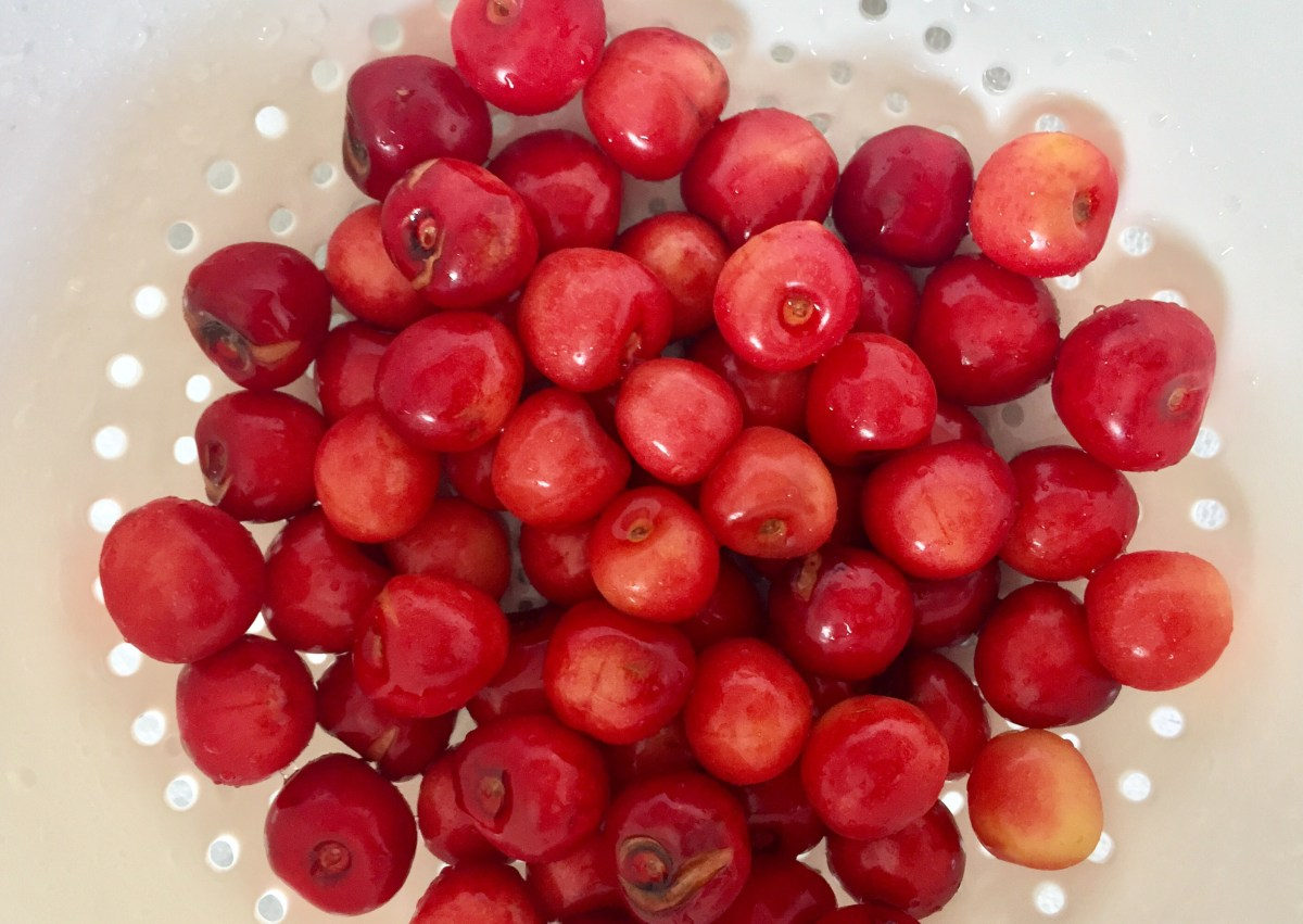 Colander full of rinsed and pitted fresh cherries