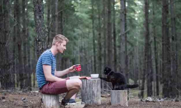 Před 2,5 lety skončil v práci a od té doby cestuje v dodávce s kočkou