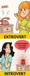 introvert a extrovert