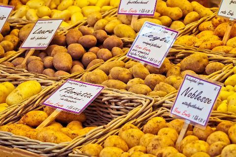 5 tipů na recepty z brambor, které zachutnají celé rodině