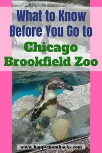 Top Tips and Things to Do at Chicago's Brookfield Zoo with Kids. Where to eat, park and which exhibits to visit. Plus event tips for Boo at the Zoo, Summer Nights and Brookfield Zoo Lights. #brookfieldzoo, #chicagoattractions, #traveltips