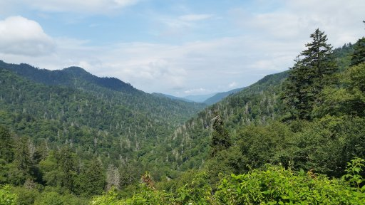 Best Things to do with Kids in Smoky Mountains National Park in Tennessee. A fun family vacation with great hikes, scenic views and historic homes. Find info on Cabins, Gatlinburg and Pigeon Forge too. Click to find out all the awesome things to do in the Smoky Mountains.