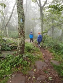 Tips for Hiking with Kids with the best hiking gear, safety tips, trail games and free printable hiking checklist. Everything you need to know before a family hike.