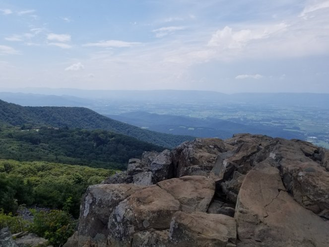 Things to do in Charlotesville VA with Kids
