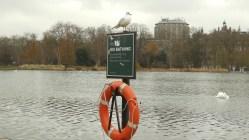 Londres - Hyde Park5
