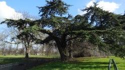 Londres - Kensington Gardens8
