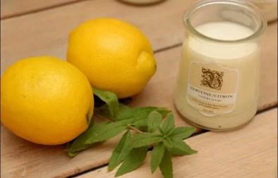 yaourts maison verveine citron