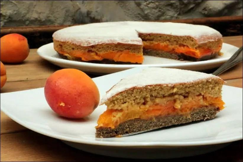 Gâteau aux abricots à l'anglaise – sans gluten et sans lactose