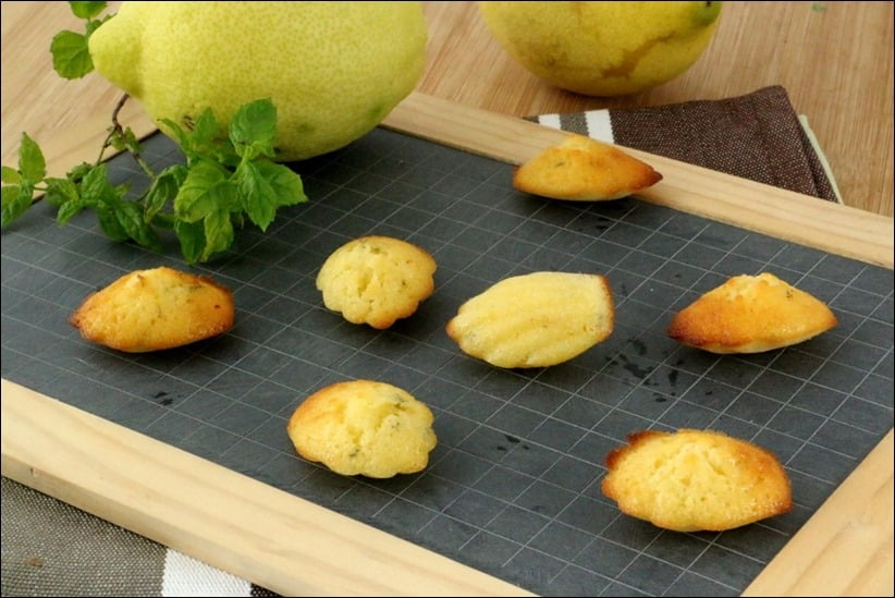 madeleine citron sans lait