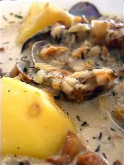 palourde a la creme pomme de terre