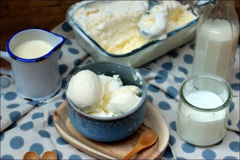 glace au yaourt maison à la sorbetière