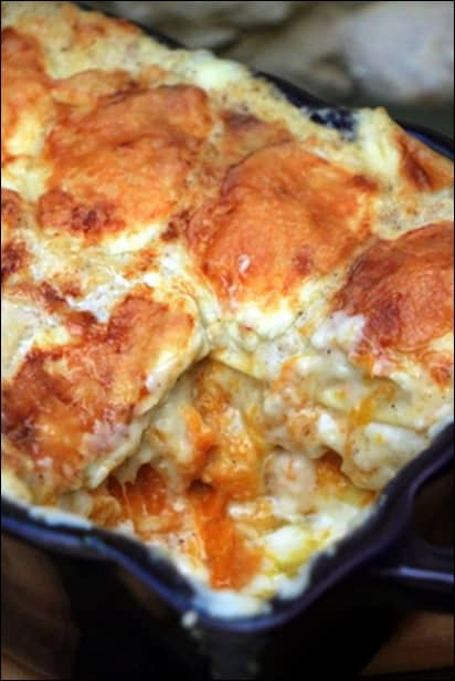lasagnes potiron chevre
