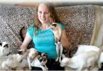 Woman Ditches Husband in Favor of Her 35 Cats And Says it's The Best Decision She's Ever Made!