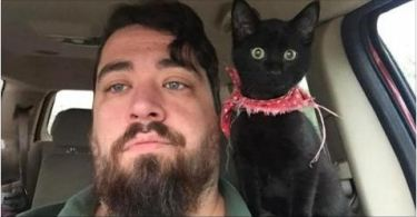 Man Saves Kitten, and She Immediately Claims Him As Family