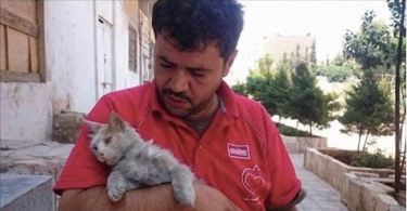 Cat Man Of Aleppo Risks His Life In A Combat Zone To Care For Over 200 Abandoned Cats