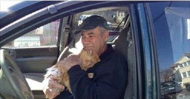 76-Year-Old Man Who Is Collecting Scrap Metal Is Feeding Stray Cats Everyday