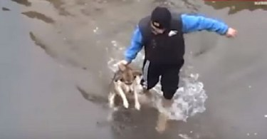 Drowning Dog Shows Pure Happiness After He Was Rescued!