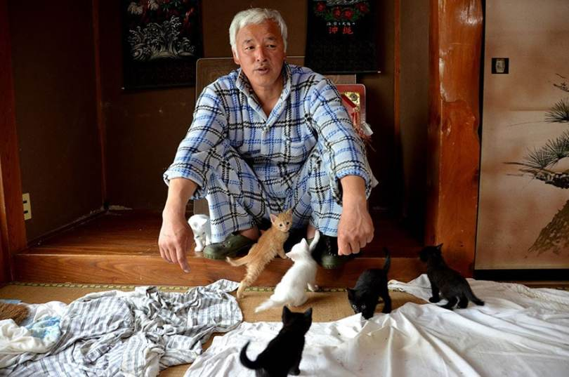 Radioactive Hero Man Returns To Fukushima To Feed The Starving Cats Forgotten By Everyone