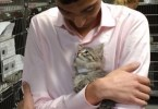Kitty Desperately Wanted Home, So She Jumped Directly Into His Arms And Looked Him Into His Eyes