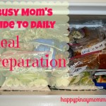 daily meal preparation