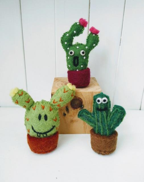fun cacti group