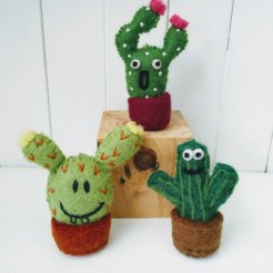 fun cacti group