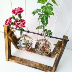 double hydroponic globe