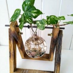 single hydroponic globe