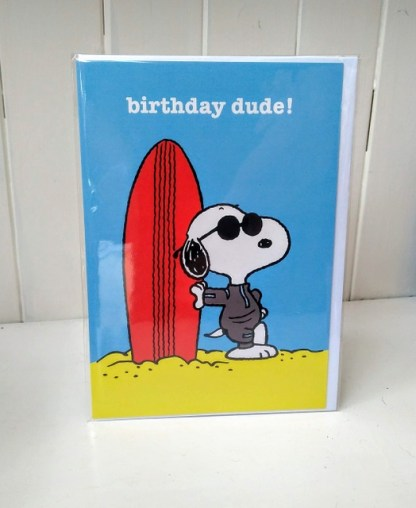 snoopy surf birthday