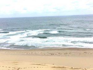 砂丘のてっぺんから見た日本海