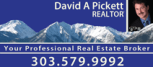 David A Pickett - Realtor