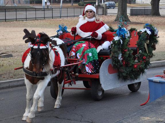 sleigh (1)