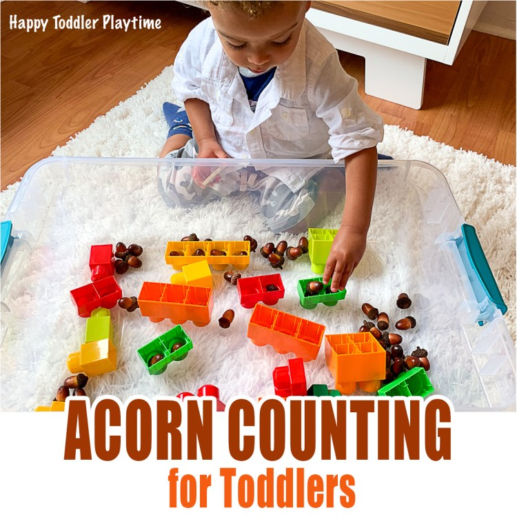 ACORN COUNTING a Fall activity for Toddlers
