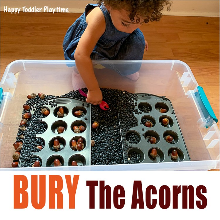 Toddler burying acorns for fall activity