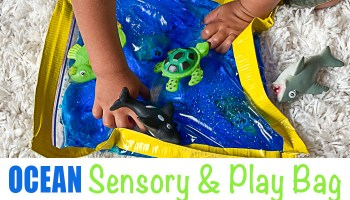 Ocean sensory and play bag for toddlers and preschoolers