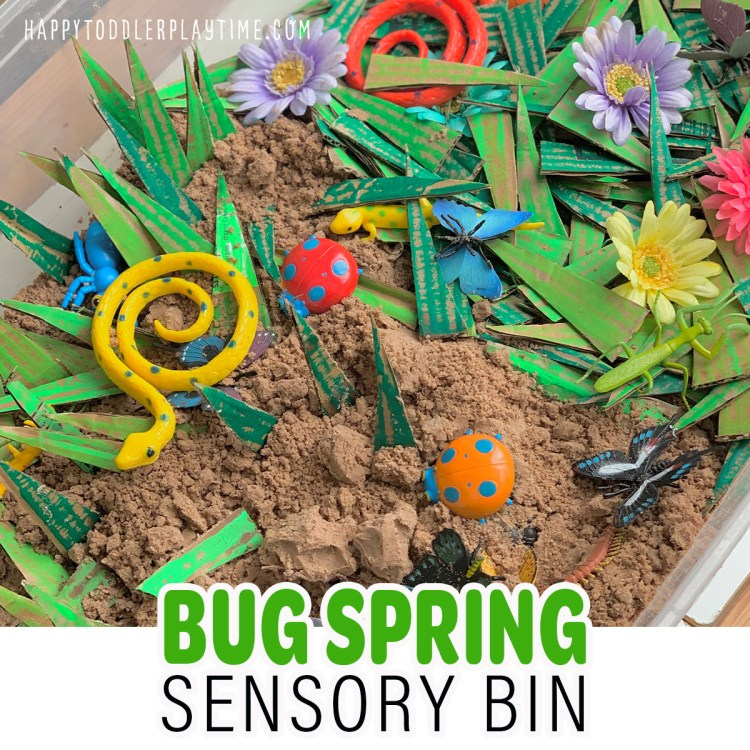 Spring Bug Sensory Bin