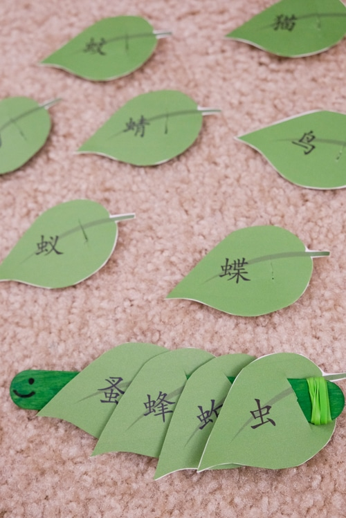 Caterpillar Chinese Word Learning Activity