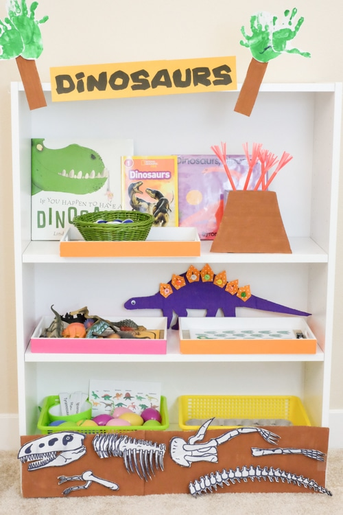 Dinosaur theme learning activities and shelf