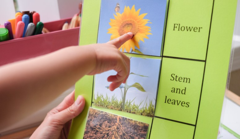 Garden Theme Learning Activities and Learning Shelf