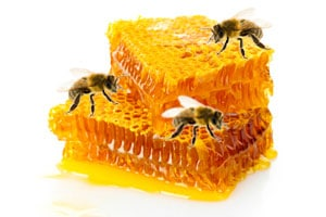 Health Benefits of Honey - honeycomb with bees